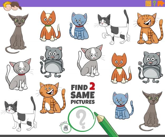 Encontre dois gatos iguais para crianças
