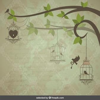 Entregando pássaros gaiolas fundo