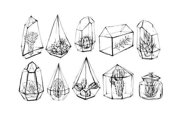 Entregue a coleção de ilustrações desenhadas, conjunto conjunto com desenhos de esboço de plantas suculentas e cactos em terrários de vidro.