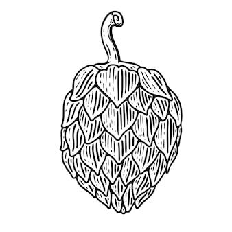 Entregue a ilustração desenhada do lúpulo da cerveja no fundo branco. elementos para o logotipo, etiqueta, emblema, sinal, crachá. imagem