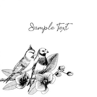 Entregue a ilustração desenhada do par dos pássaros com flores da orquídea