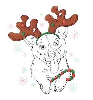 Entregue o retrato desenhado do cão do corgi no vetor dos acessórios do natal.