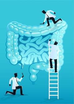 Equipe de médicos diagnosticar intestino humano
