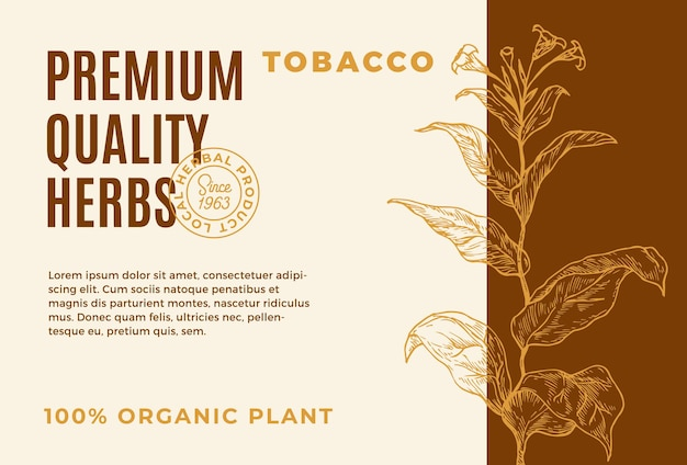 Ervas de qualidade premium vetor abstrato design rótulo tipografia moderna e mão desenhada planta de tabaco br ...