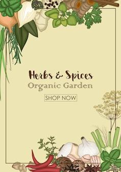 Ervas e especiarias bandeira de loja de jardim orgânico