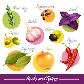 Ervas e especiarias coleção