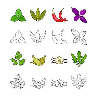 Ervas e especiarias culinárias
