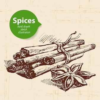 Ervas e especiarias de cozinha. fundo vintage com canela de esboço desenhado à mão