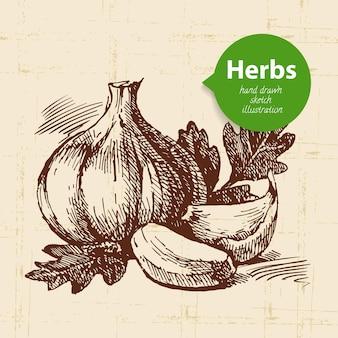 Ervas e especiarias de cozinha. fundo vintage com esboço desenhado à mão alho