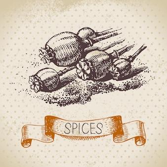 Ervas e especiarias de cozinha. fundo vintage com sementes de papoula de esboço desenhado à mão
