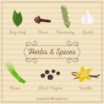 Ervas e especiarias pacote