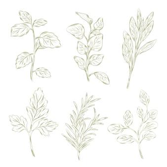 Ervas e flores silvestres estilo vintage