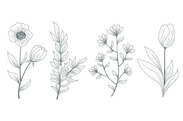 Ervas e flores silvestres naturais realistas