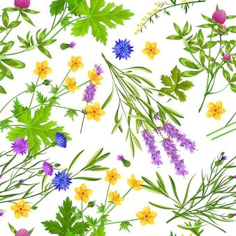 Ervas e flores silvestres sem costura padrão