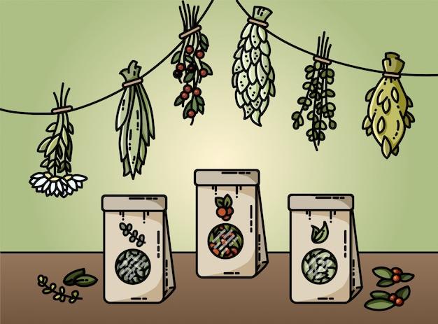 Ervas saudáveis e ilustração em vetor estilo plano chá natural
