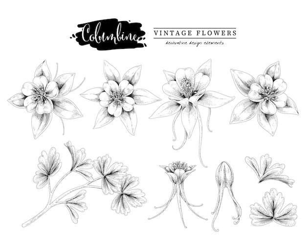Esboçar a coleção de botânica floral