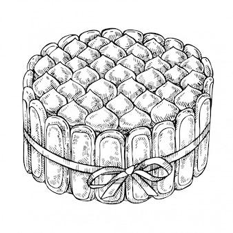 Esboce a sobremesa italiana tiramisu. bolo desenhado à mão com mascarpone, savoiardi, café, cacau