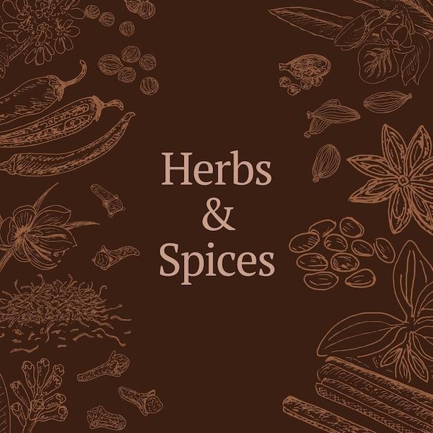 Esboce o modelo de ervas e especiarias com canela, coentro, cardamomo, pimenta, açafrão, anis estrelado, cravo