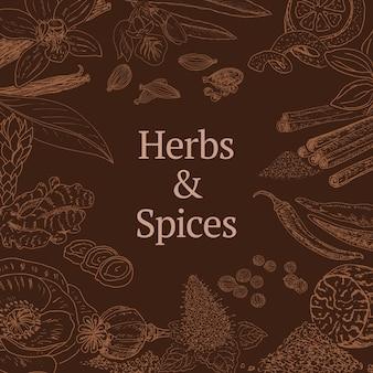 Esboce o modelo de ervas e especiarias com canela, coentro, papoula, cardamomo, pimenta, hortelã, baunilha, casca de noz-moscada gengibre