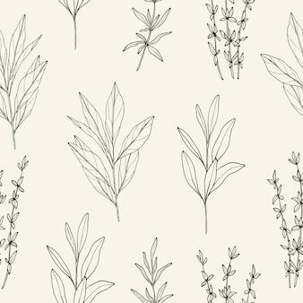 Esboce o padrão sem emenda de ervas e especiarias