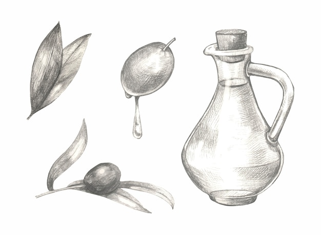 Esboço conjunto de azeitonas mão desenhada.