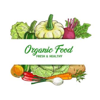 Esboço de alimentos vegetais frescos de repolho, cenoura, cebola e pimenta malagueta.