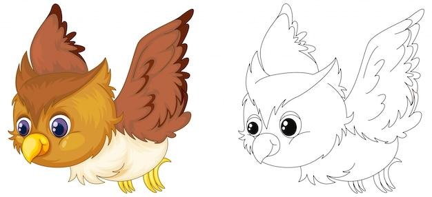 Esboço de animais para vôo de coruja