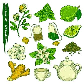 Esboço de elementos de chá em ícones coloridos de vetor