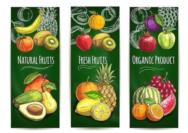 Esboço de frutas orgânicas frescas e suculentas de pêra, laranja, abacate