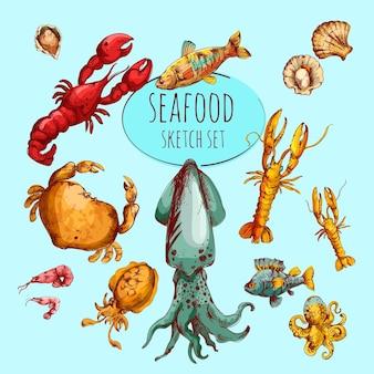 Esboço de frutos do mar colorido