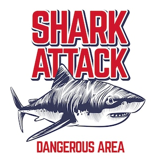 Esboço de tubarão atacando selvagem com texto