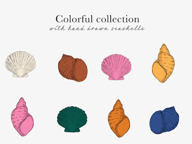 Esboço desenhado à mão de coleção de conchas com molusco concha e clip-art oceano