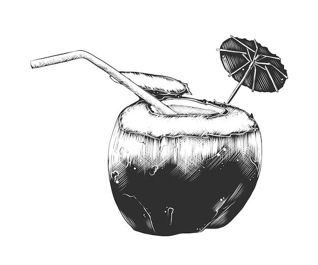 Esboço desenhado de mão de coquetel de coco de verão