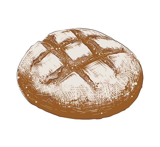 Esboço desenhado de mão de pão em colorido