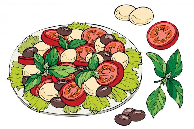 Esboço desenhado de mão de salada fresca.