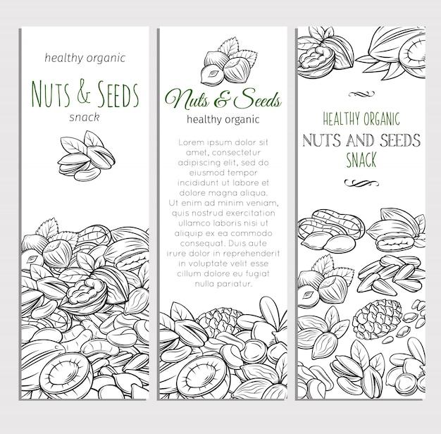 Esboço desenhado de mão nozes e sementes
