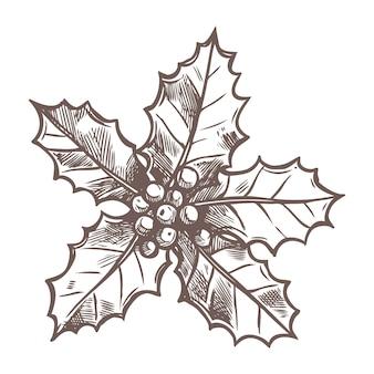 Esboço do natal com esboço holly no estilo desenhado mão. decoração festiva de ano novo