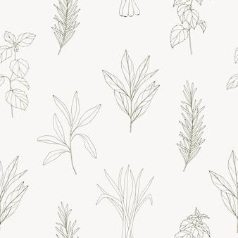 Esboço padrão sem emenda com especiarias e ervas