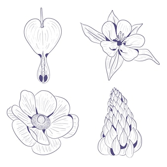 Esboços desenhados à mão de flores da primavera