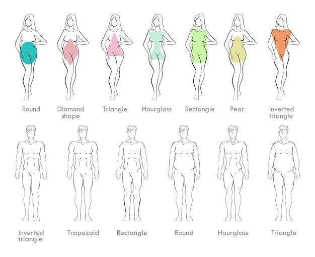Esboços dos tipos de corpo masculino e feminino