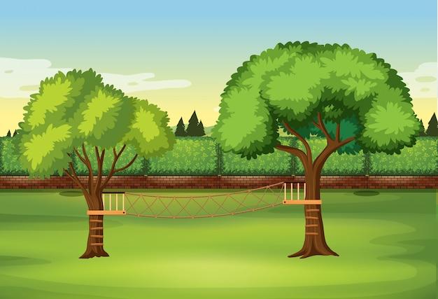 Escada de corda na árvore na natureza