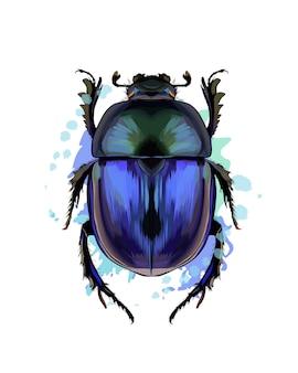 Escaravelho com um toque de aquarela