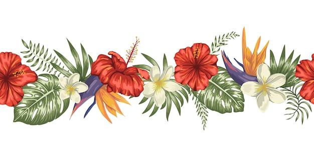 Escova de fronteira sem costura de folhas tropicais verdes com flores de plumeria, strelitzia e hibisco no fundo branco.
