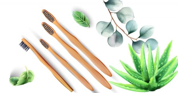 Escovas de dentes de bambu com plantas de aloe vera