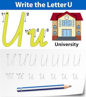 Escreva a carta u cartão inglês