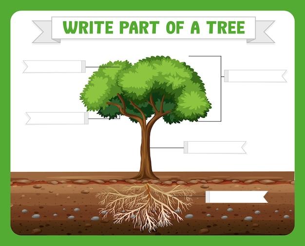 Escreva partes de uma planilha de árvore para crianças