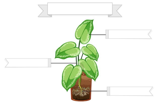 Escreva partes de uma planilha de plantas para crianças