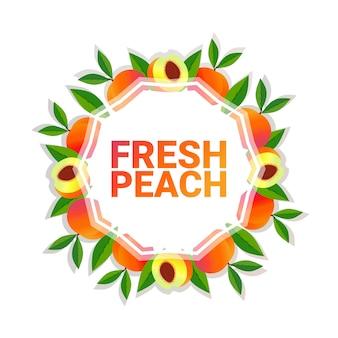 Espaço colorido da cópia do círculo colorido da fruta do pêssego orgânico sobre o fundo branco do teste padrão, estilo de vida saudável ou conceito da dieta