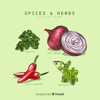 Especiarias e ervas coleção