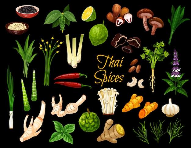 Especiarias tailandesas, ervas e condimentos culinários